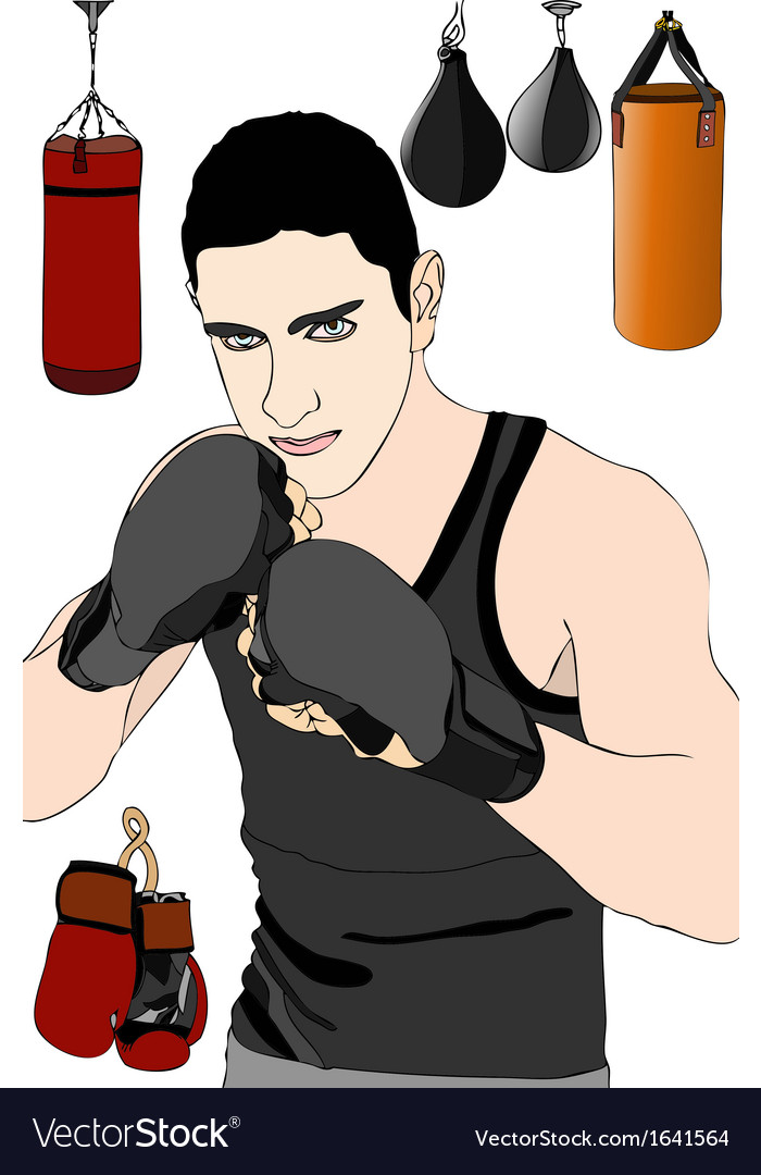 Boxer in training vector | Price: 1 Credit (USD $1)