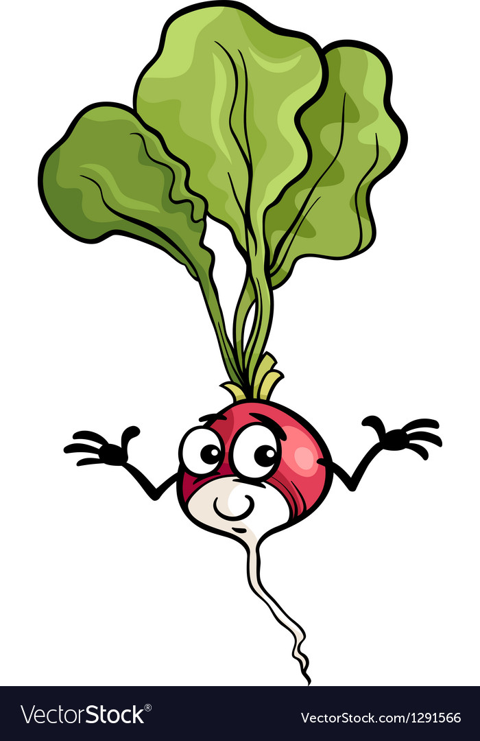 Cute radish vegetable cartoon vector | Price: 1 Credit (USD $1)