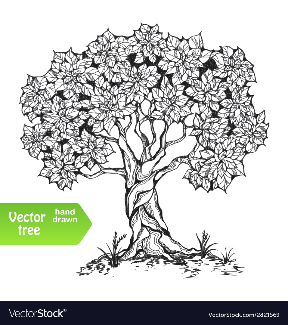 Alone tree vector | Price: 1 Credit (USD $1)