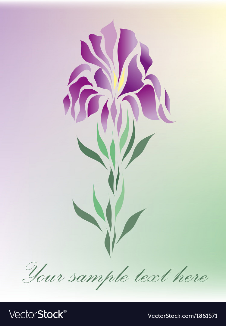 Floral beauty greeting card vector | Price: 1 Credit (USD $1)