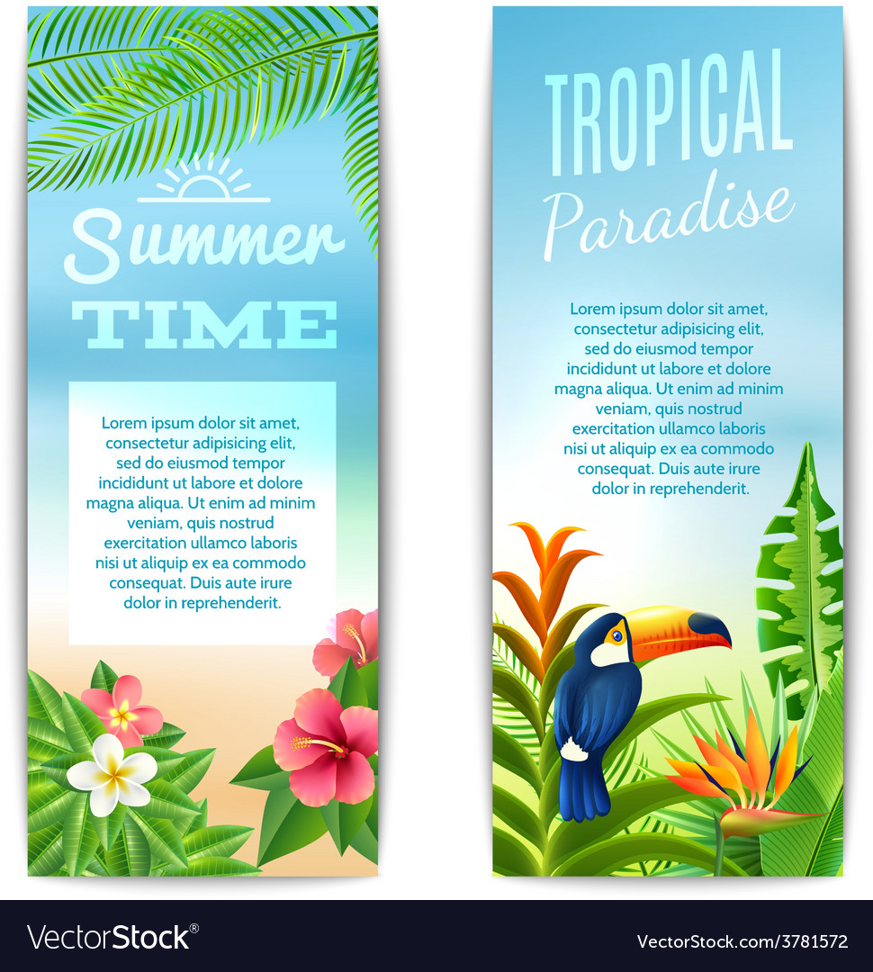Tropical summer banner vector | Price: 1 Credit (USD $1)