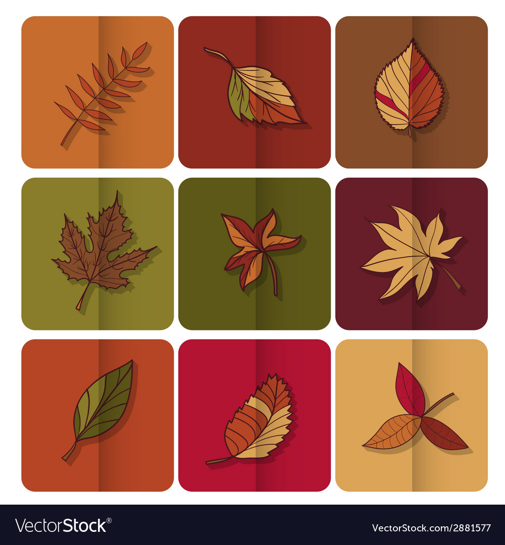 Autumn leaves icon red yellow and green leaves of vector | Price: 1 Credit (USD $1)