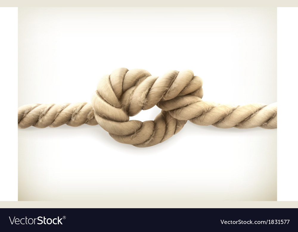 Knot vector | Price: 1 Credit (USD $1)