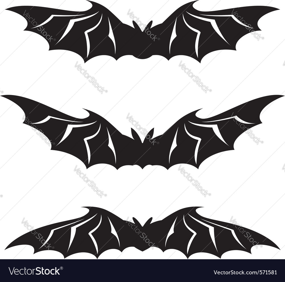 Bats collection on white background vector | Price: 1 Credit (USD $1)
