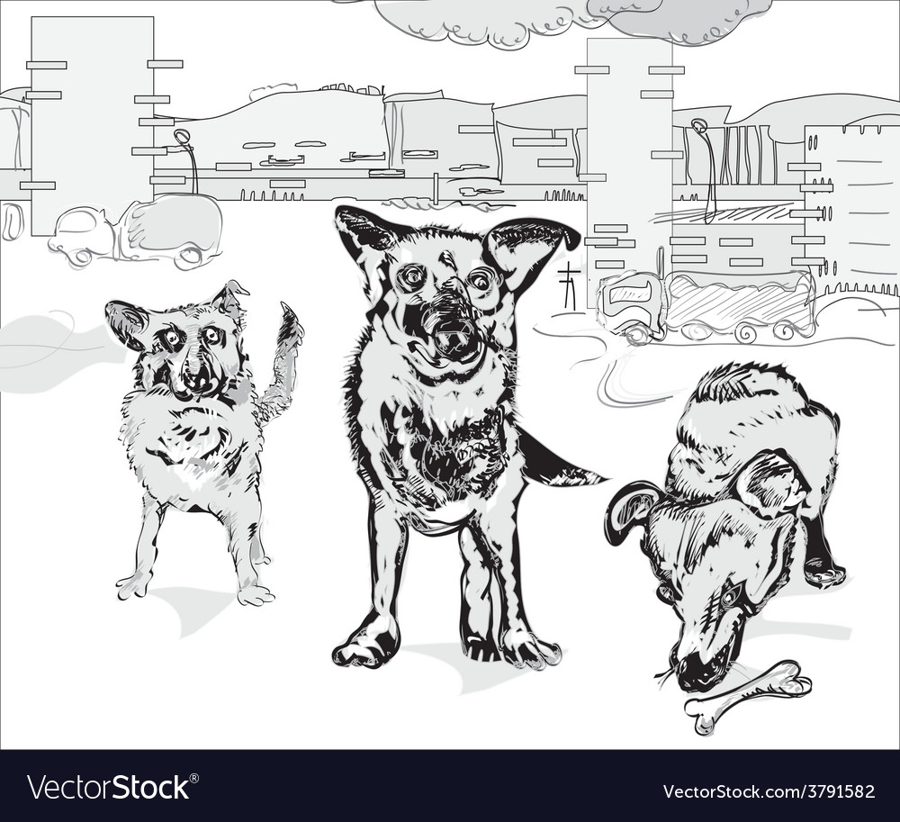 Dogs in the city vector | Price: 1 Credit (USD $1)