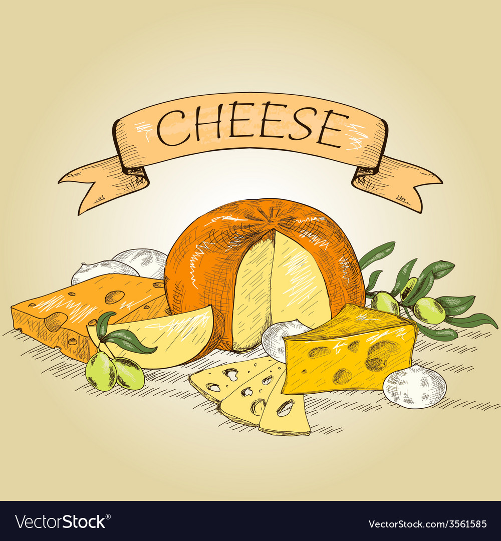 Cheese vector | Price: 1 Credit (USD $1)