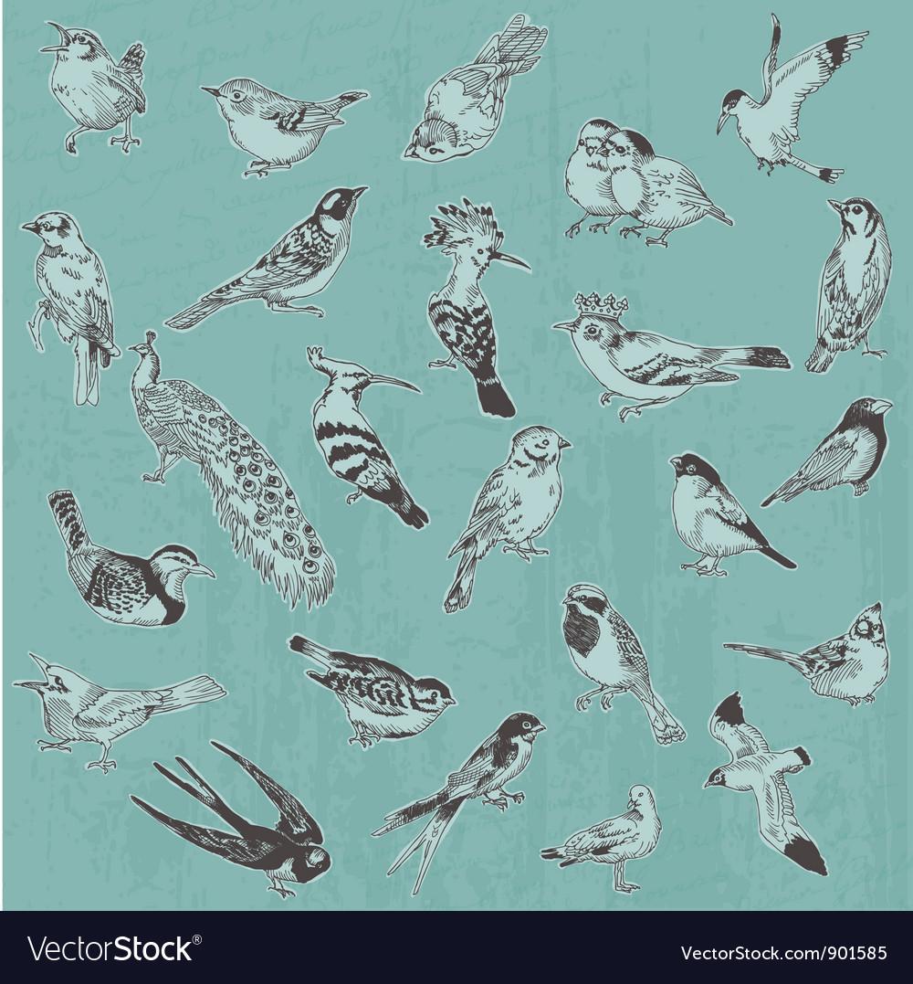 Hand drawn birds vector | Price: 1 Credit (USD $1)