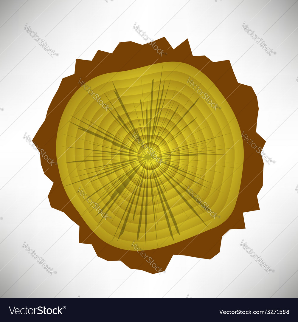 Tree rings vector | Price: 1 Credit (USD $1)