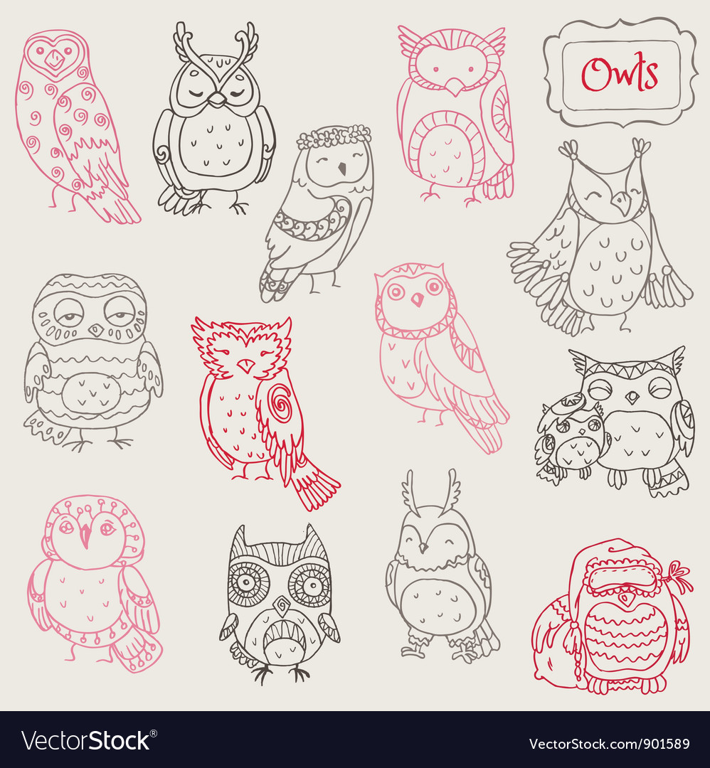Various owl doodle collection vector | Price: 1 Credit (USD $1)