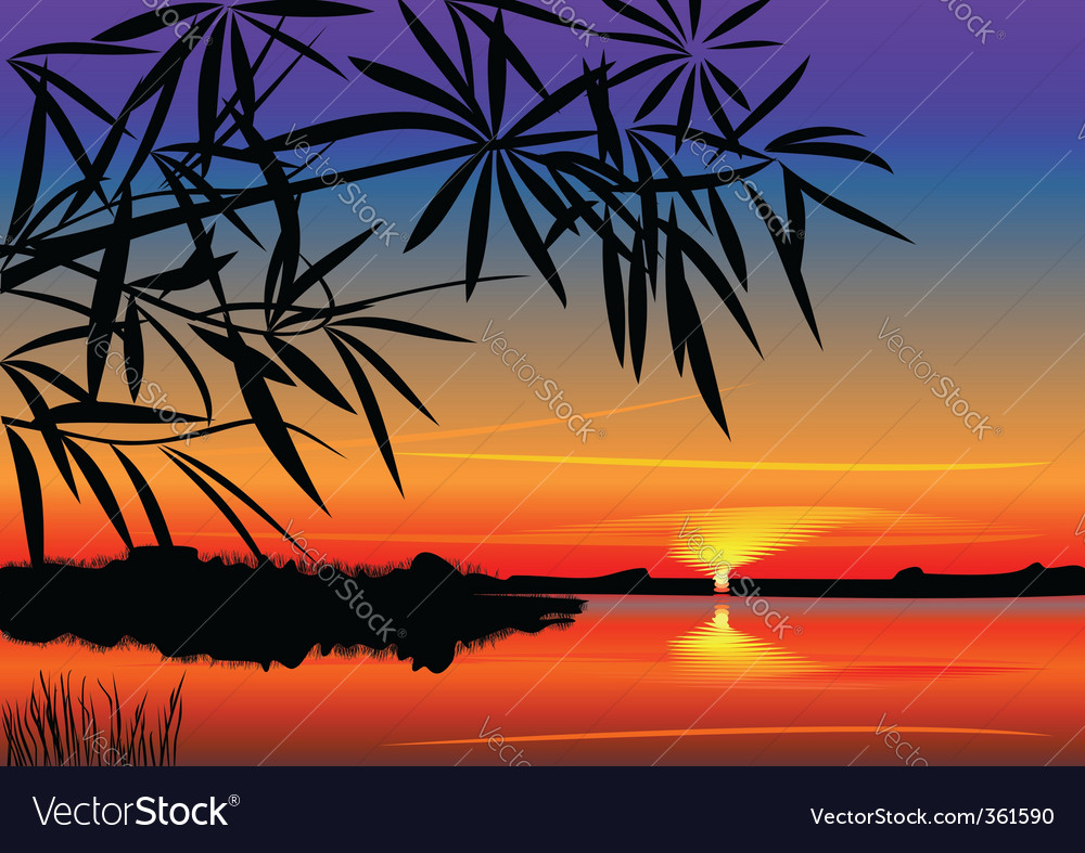 Beautiful sunset over the lake vector | Price: 1 Credit (USD $1)