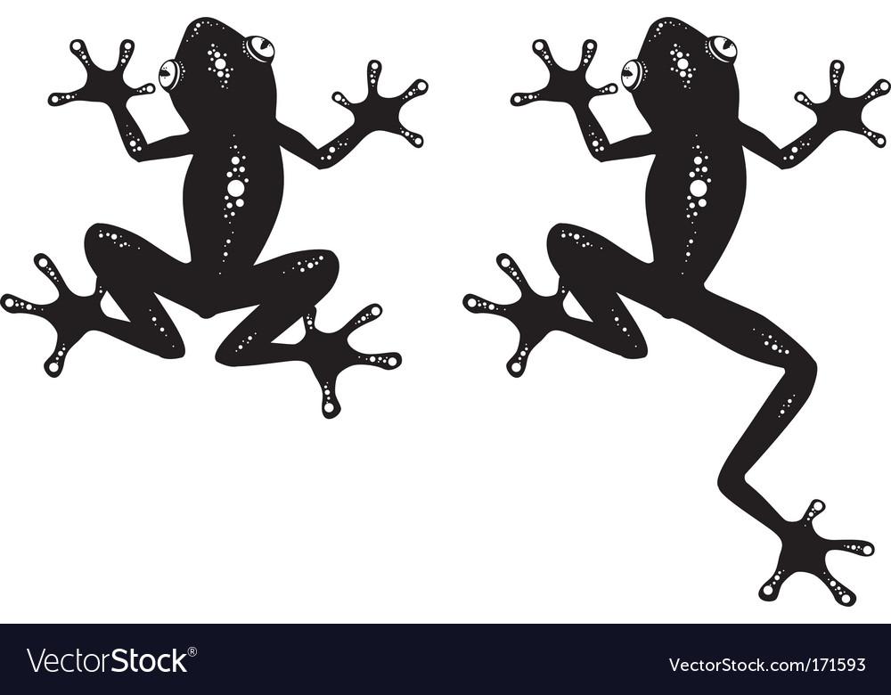 Frog vector | Price: 1 Credit (USD $1)