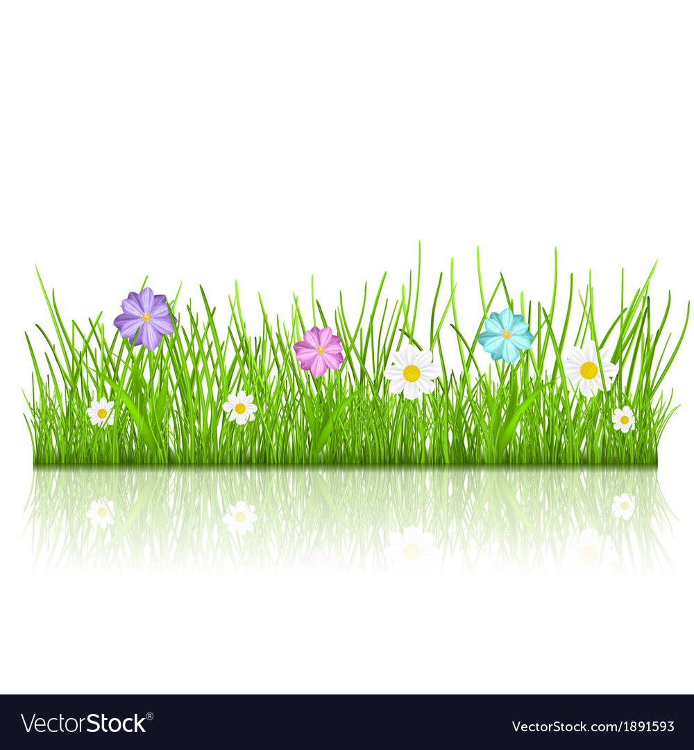 Grass with flowers vector | Price: 1 Credit (USD $1)