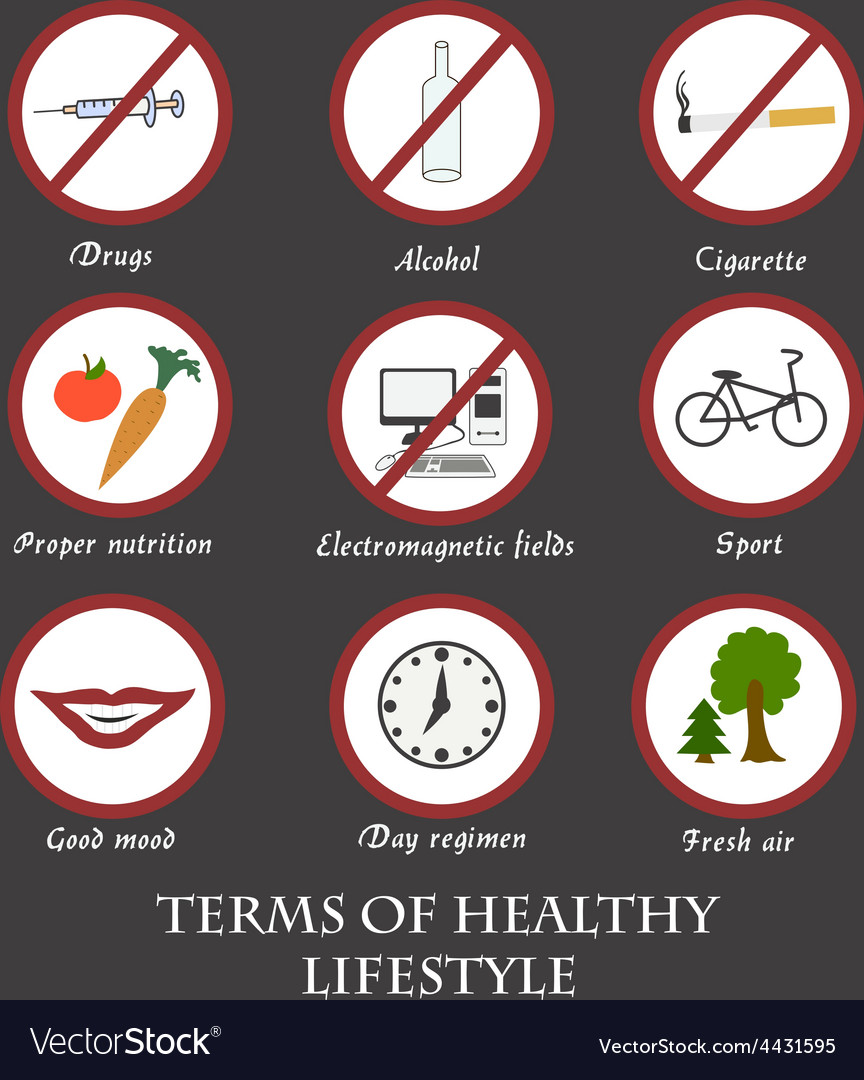 Infographics rules of healthy lifestyles vector | Price: 1 Credit (USD $1)