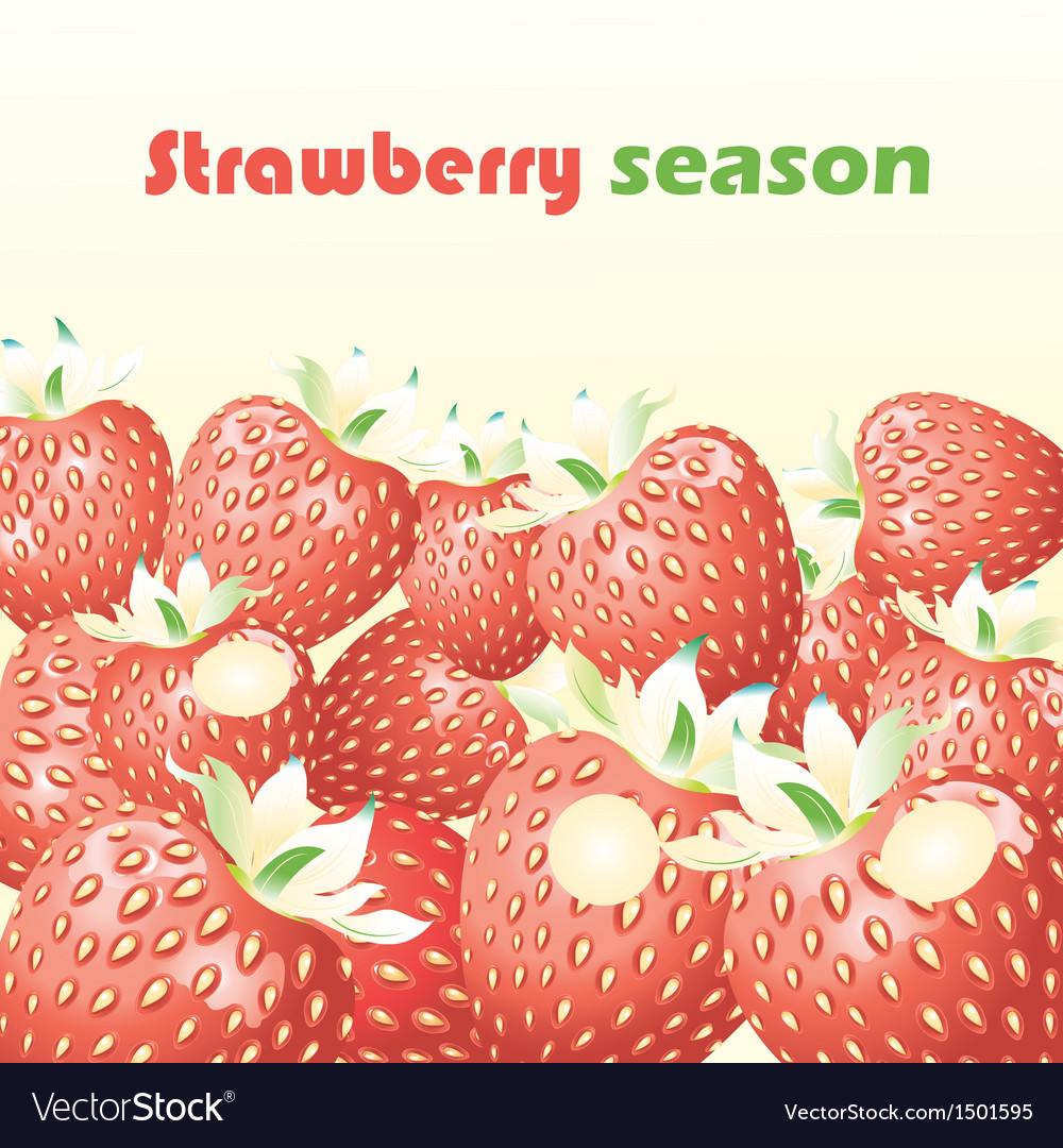 Strawberry season vector | Price: 1 Credit (USD $1)
