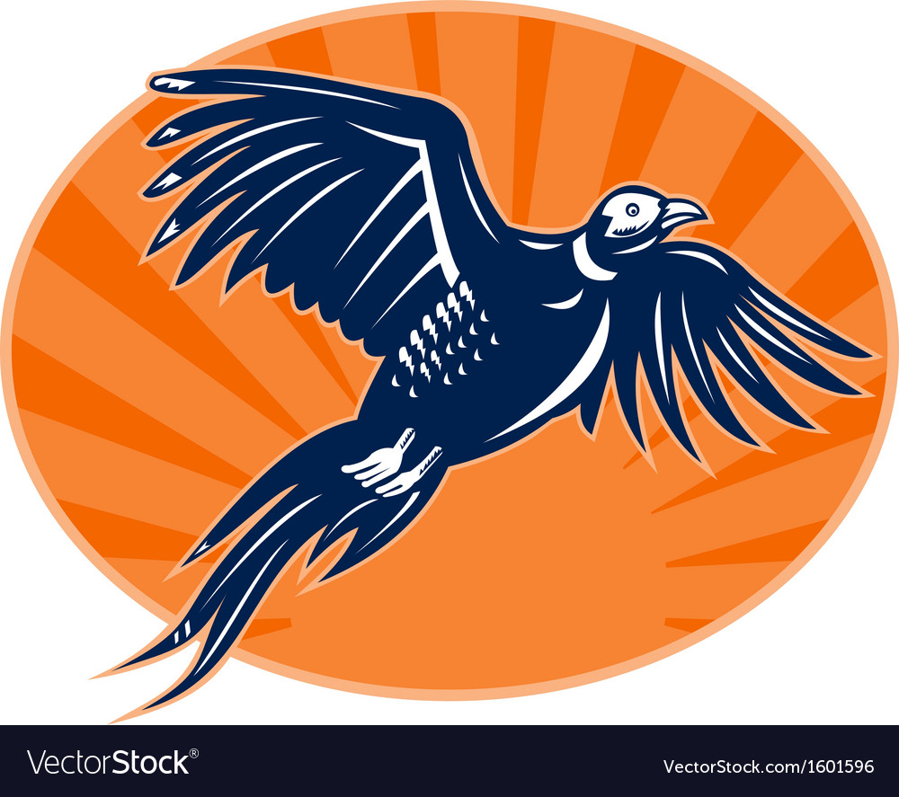 Pheasant bird flying up with sunburst vector | Price: 1 Credit (USD $1)