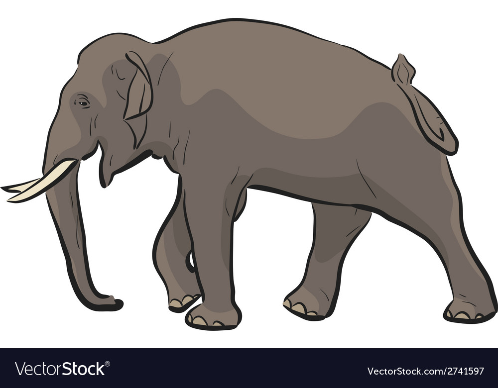 Asian elephant vector | Price: 1 Credit (USD $1)