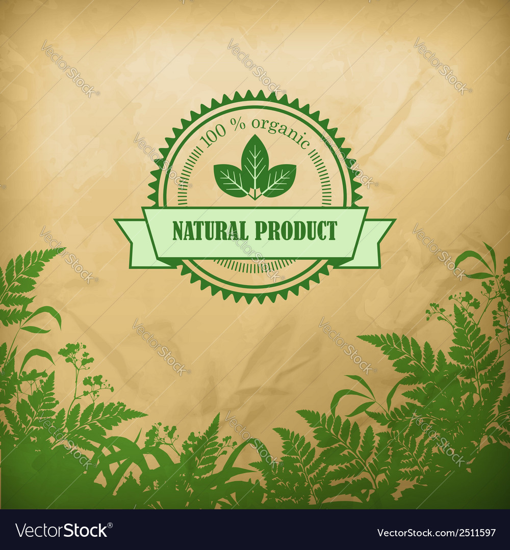 Natural organic herbal composition vector | Price: 1 Credit (USD $1)