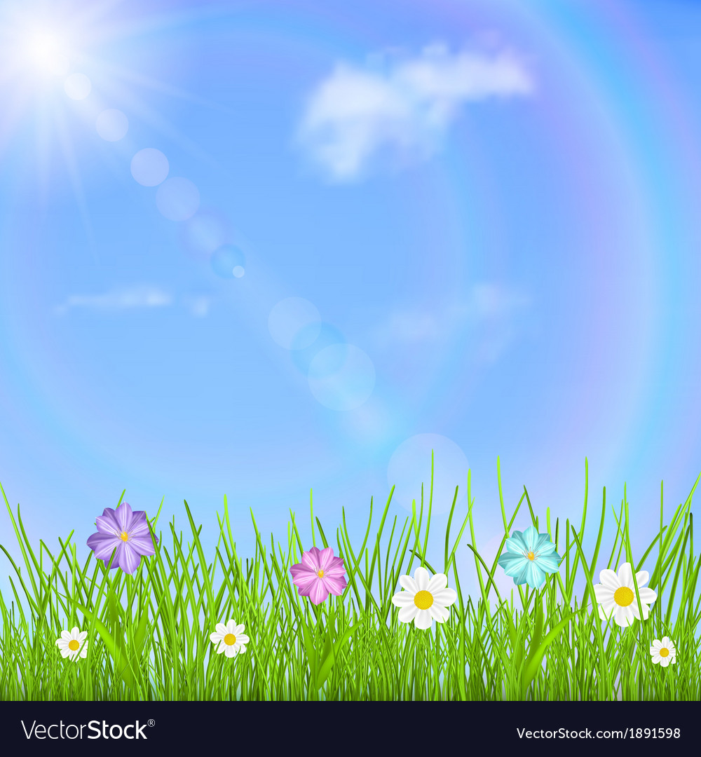 Background with sky sun grass and flowers vector | Price: 1 Credit (USD $1)