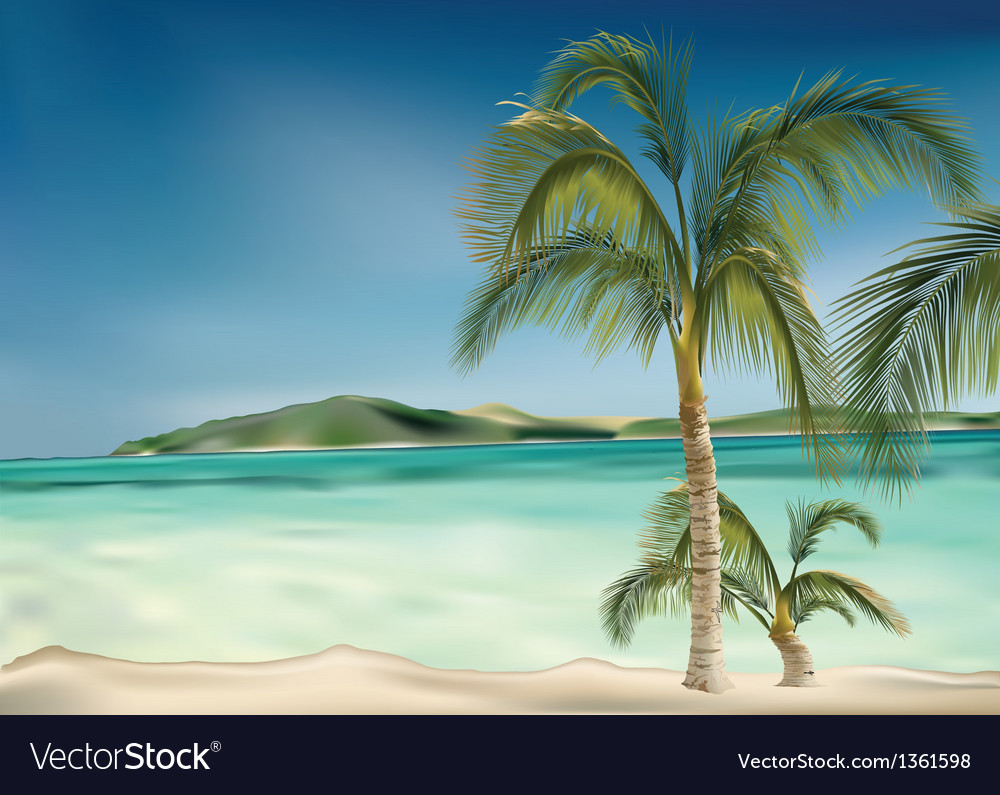 Beach and palms vector | Price: 1 Credit (USD $1)