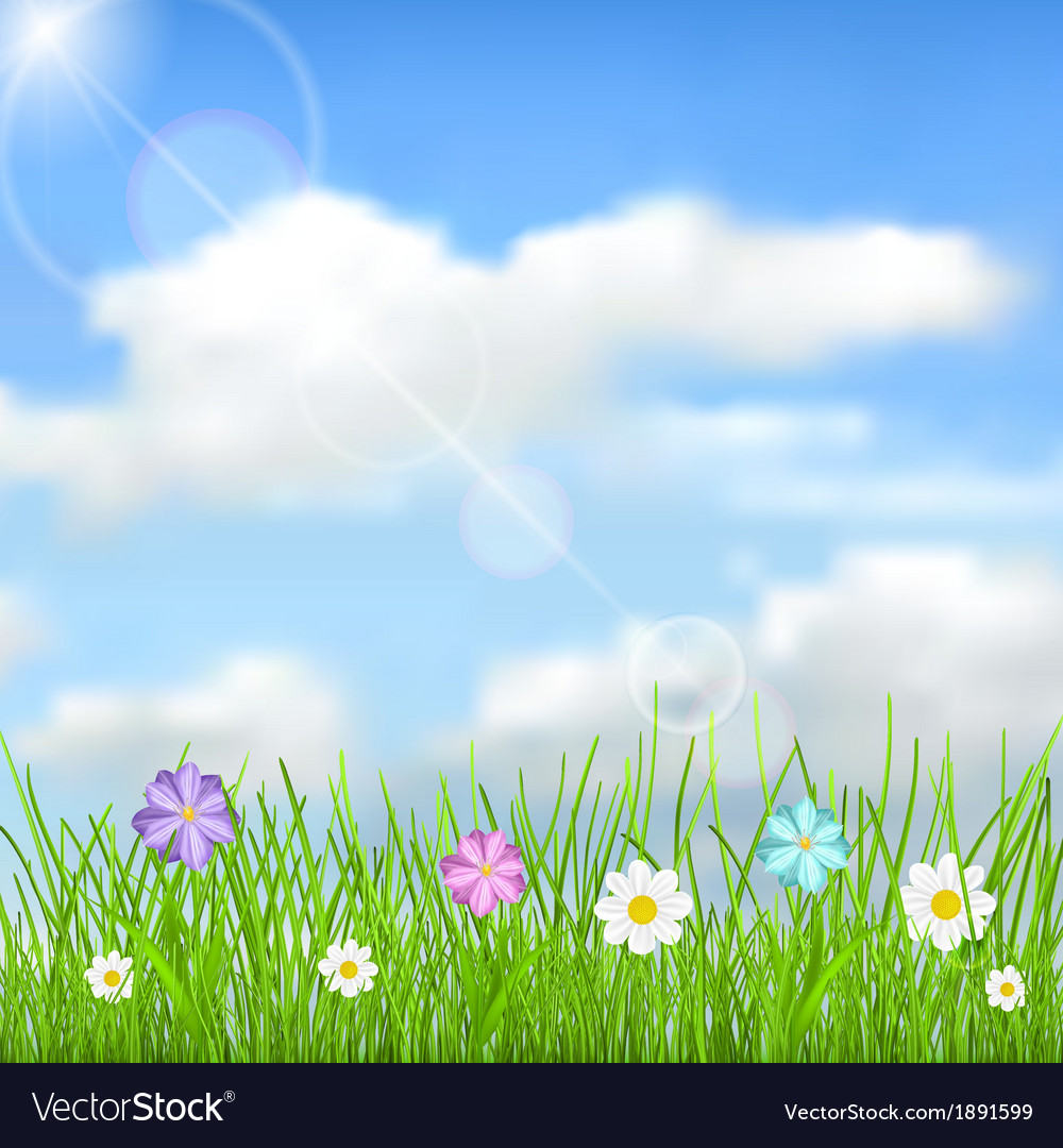 Background with sky clouds grass and flowers vector | Price: 1 Credit (USD $1)