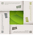 Green leaf texture and torn paper composition vector