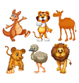 A group of wild animals vector