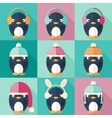 Penguins icons set in flat design vector