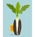 Growing daikon radish with green leafy top in vase vector