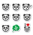 Panda bear icons set - happy sad angry isolated vector