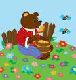 Bear on a lawn vector