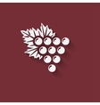 Grapes wine design element vector