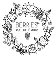 Berries frame vector
