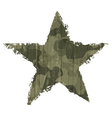 Star abstract khaki vector