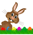Easter bunny looks left vector