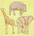 Hypopo elephant geraffe vector