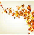 Autumn falling leaves background eps 10 vector