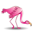A pink flamingo leaned on a white vector
