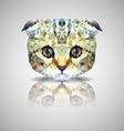 British lop-eared cat polygon geometric vector
