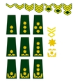 Georgian armed forces insignia vector