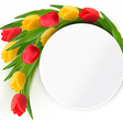 Yellow and red tulips holiday background vector