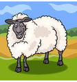 Sheep farm animal cartoon vector