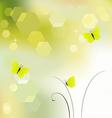 Desktop wallpaper background with butterflies vector