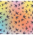 Swallow and rainbow hexagons vector