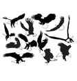 Eagles in silhouettes vector