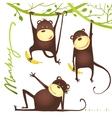 Monkey fun cartoon hanging on vine with banana vector