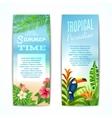 Tropical summer banner vector