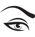 Woman eye and brow vector