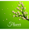 Floral branch background concept vector
