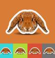 Abstract rabbit low polygonal vector