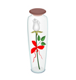 A white rose with red ribbon in glass bottle vector